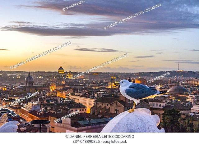 Rome sunset cityscape aerial view from vitorio emanuelle monument viewpoint