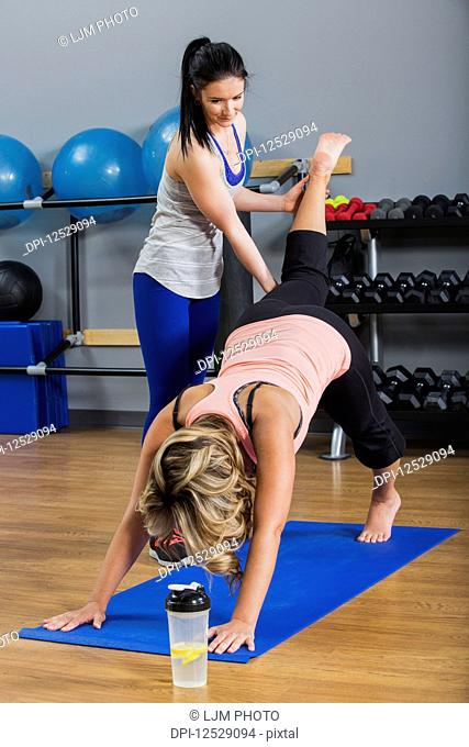 A middle-aged women doing a downward dog leg lift yoga exercise at the gym with her personal trainer giving assistance; Spruce Grove, Alberta, Canada