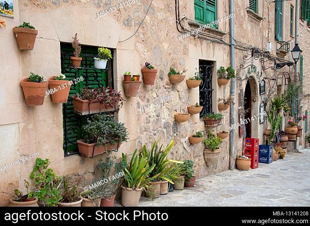Flower pots on the wall, Valldemossa, Mallorca