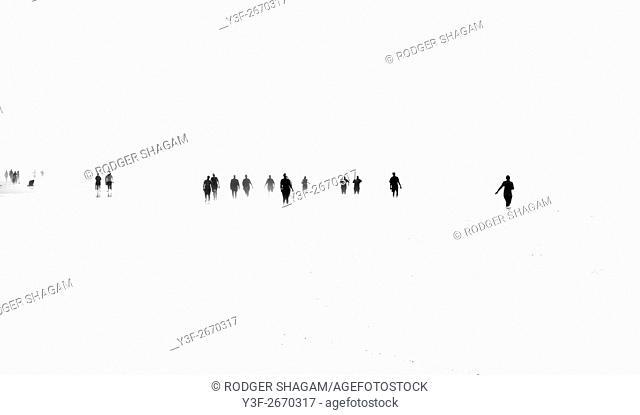 People walking in the ocean at low tide