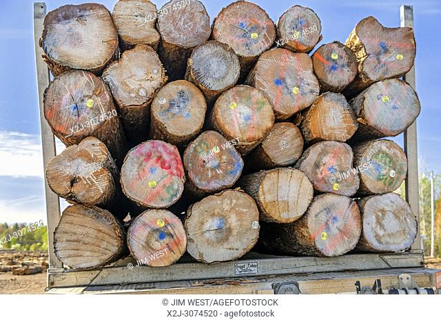 Baraga, Michigan - Logs on a truck at the Besse Forest Products log yard in Michigan's upper peninsula