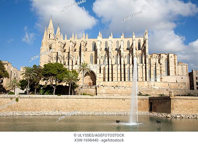 cathedral, palma de mallorca, mallorca island, spain, europe