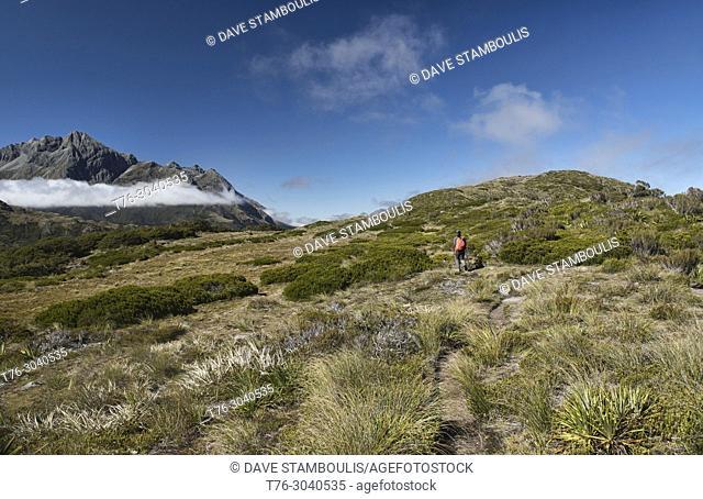 Hiking along the Key Summit ridge off the Routeburn Track, Fjordland, New Zealand
