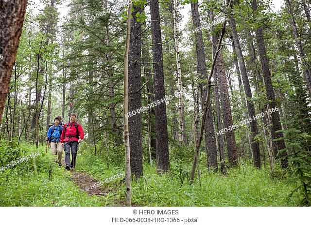 three male backpackers hiking in the woods