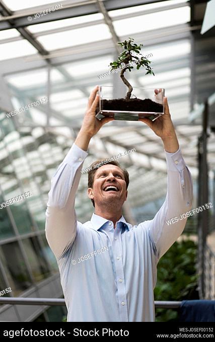 Businessman watching bonsai grow in transparent box
