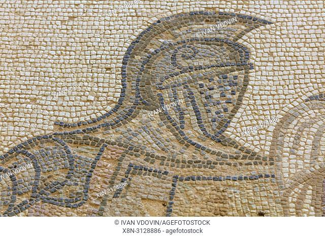 Mosaics in House of the Gladiators (3rd century), ancient Greek city Kourion, near Limassol, Cyprus
