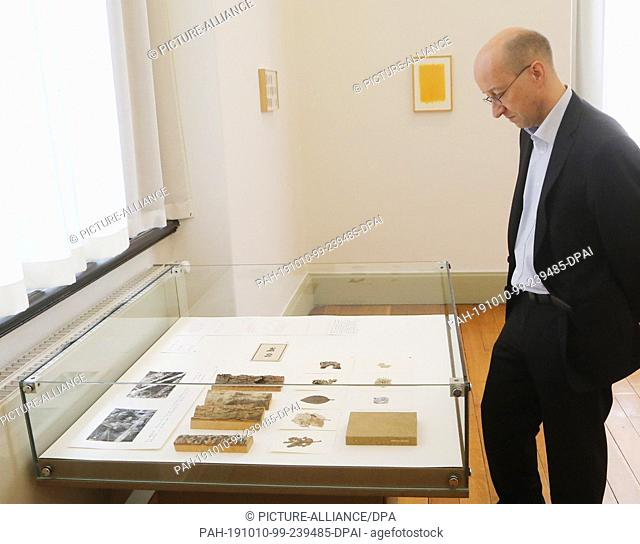 10 October 2019, Thuringia, Altenburg: Roland Krischke, director of the Lindenau Museum, looks at an exhibition showcase with collections of various trees at...