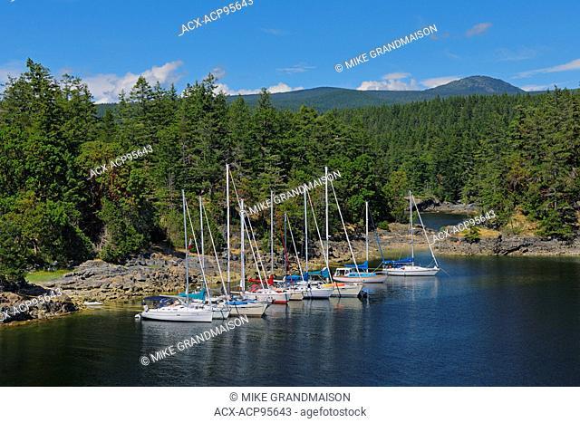 Sailboats docked in cove near Sechelt Smuggler Cove Marine Provincial Park British Columbia Canada