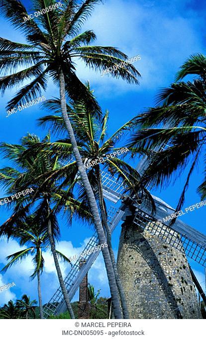 Barbados, Green Pond, Morgan Lewis windmill