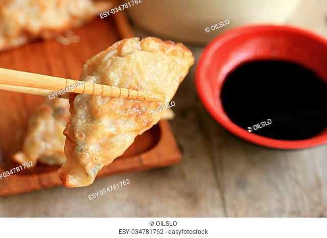 fried dumplings - Japanese food