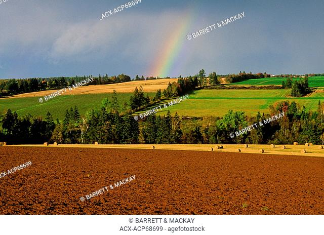 Rainbow over ploughed field, Brookfield, Prince Edward Island, Canada