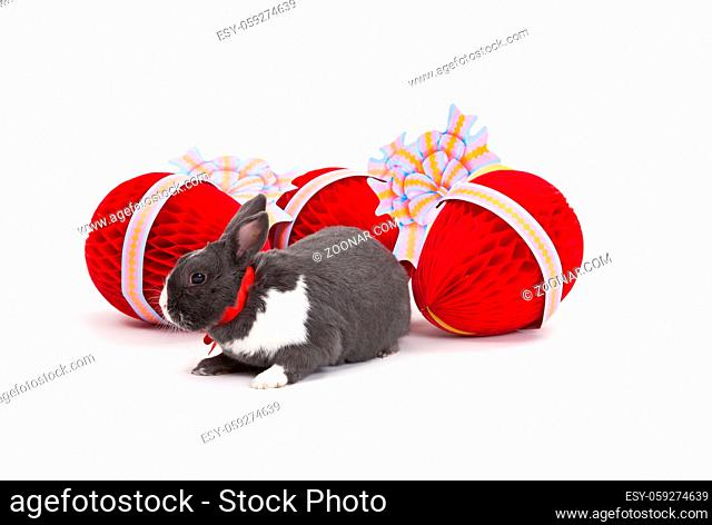 Easter bunny and Easter eggs isolated on white background