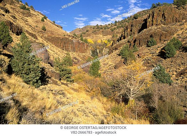 De Garmo Canyon, Hart Mountain National Antelope Refuge, Oregon