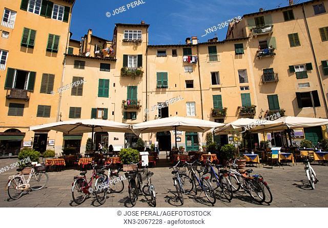 Piazza dell'Amfiteatro, Amphitheatre Square, Lucca, Tuscany, Italy, Europe
