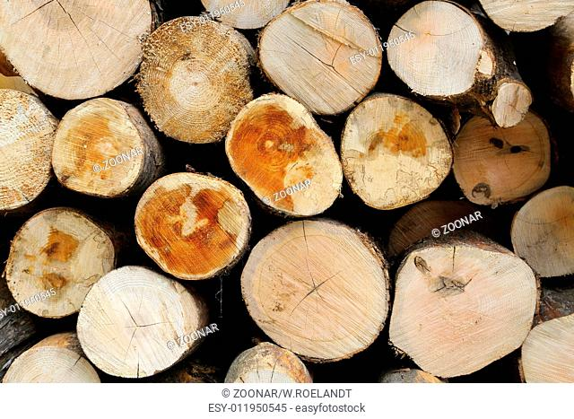 Woodpile - 01