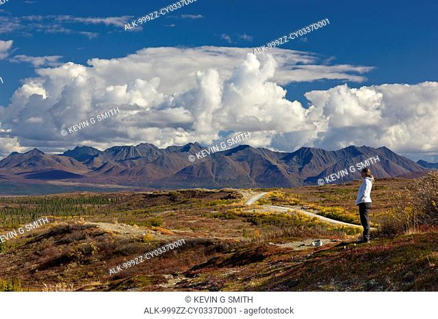 Woman looking out over the Fall tundra towards the Alaska Range to the north side of the Denali Highway, Interior Alaska