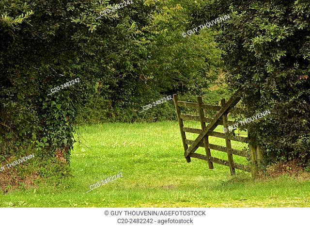 Romantic ancient wooden gate, Omonville la Petite, Contention, 50, Normandy, France