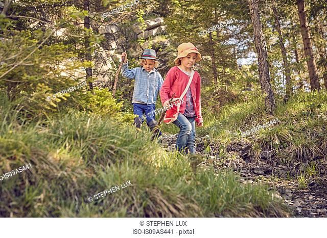 Two young children, exploring forest