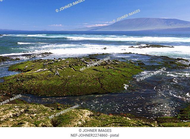 View of rocky coast