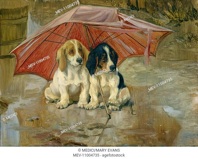 Wait till the Clouds roll by' – Two Dogs Sheltering under a Red Umbrella
