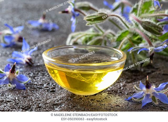 A bowl of borage oil with blooming plant on a dark background