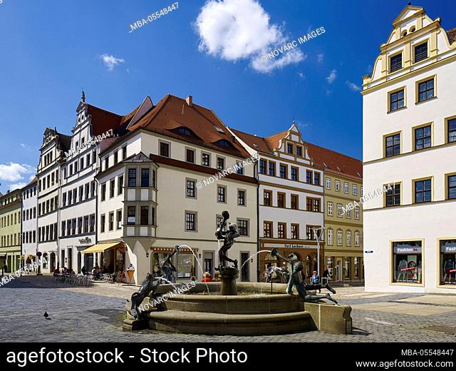 Houses on the market with Marktbrunnen, Torgau, Saxony, Germany