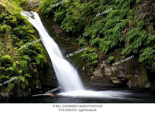 Goldstream Falls - Goldstream Provincial Park, Victoria, Vancouver Island, British Columbia, Canada