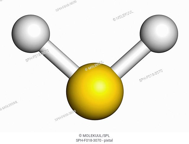 Hydrogen sulfide (H2S) molecule. Toxic gas with characteristic odour of rotten eggs. Atoms are represented as spheres with conventional colour coding: hydrogen...
