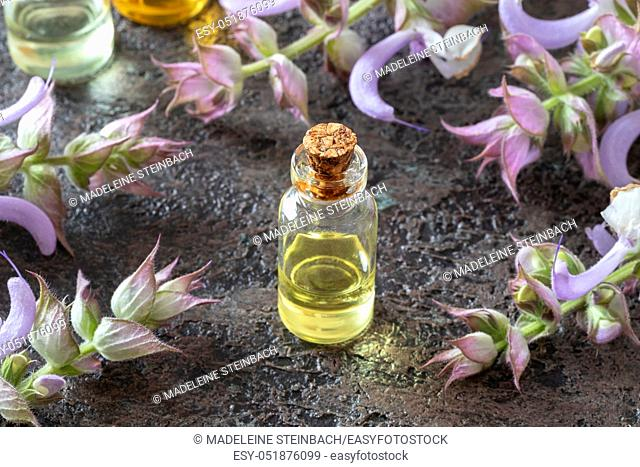 A bottle of essential oil with fresh blooming clary sage plant