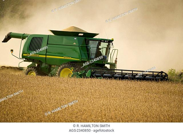 Agriculture - A John Deere combine harvesting a crop of healthy soybeans in Autumn / near Northland, Minnesota, USA
