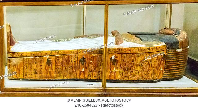 Egypt, Cairo, Egyptian Museum, from the tomb of Sennedjem, Deir el Medina : Mummiform coffin of Isis. She holds a vine plant