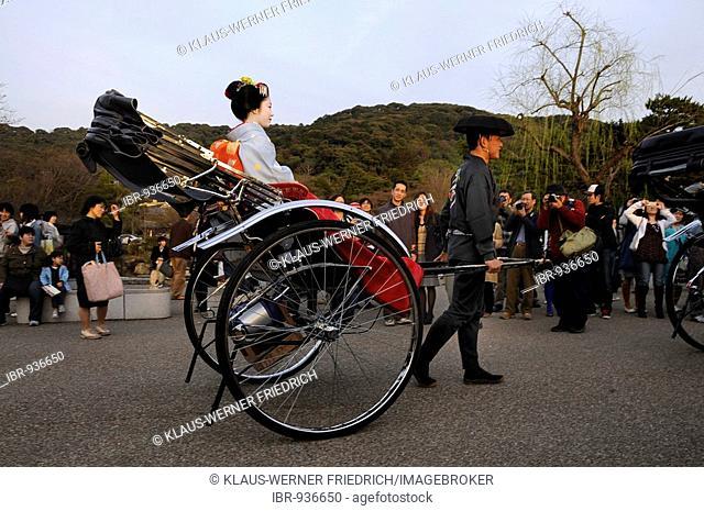 A Maiko, a trainee Geisha, sitting in a rickshaw in Maruyama Park, Kyoto, Japan, Asia
