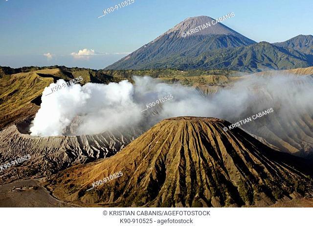 Mount Bromo vulcano at sunrise, Bromo Tengger Semeru National Park, Java, Indonesia, Southeast Asia