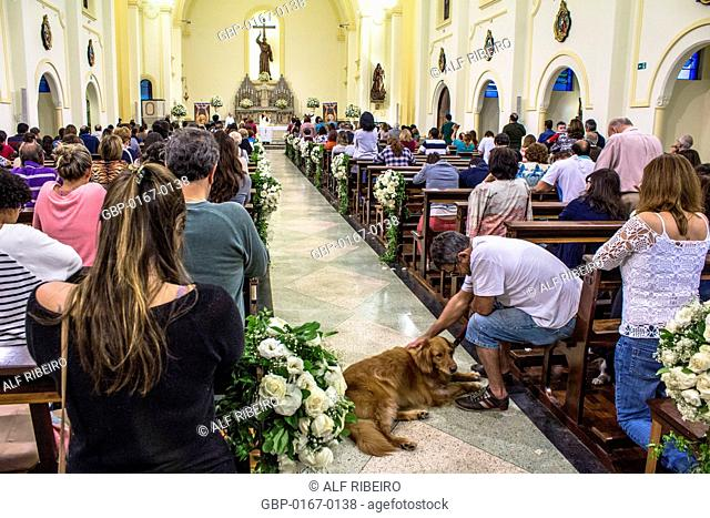 Blessings, Mass, Church, St. Francisco of Assis, 04/10/2015, Capital, Vila Clementino, São Paulo, Brazil