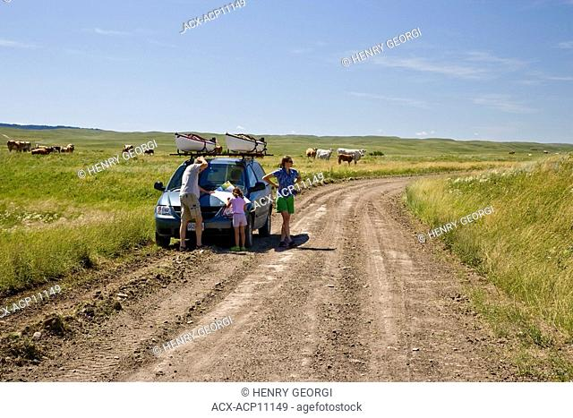 Young family looking at map apparently lost on Gap road between Center Block and West Block of Cypress Hills Interprovincial Park, Saskatchewan, Canada