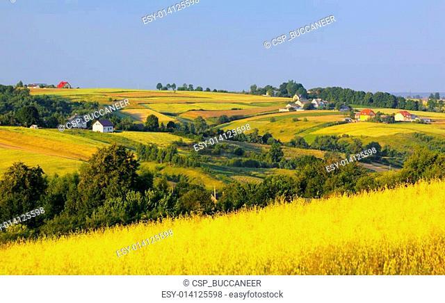 Wavy fields and village