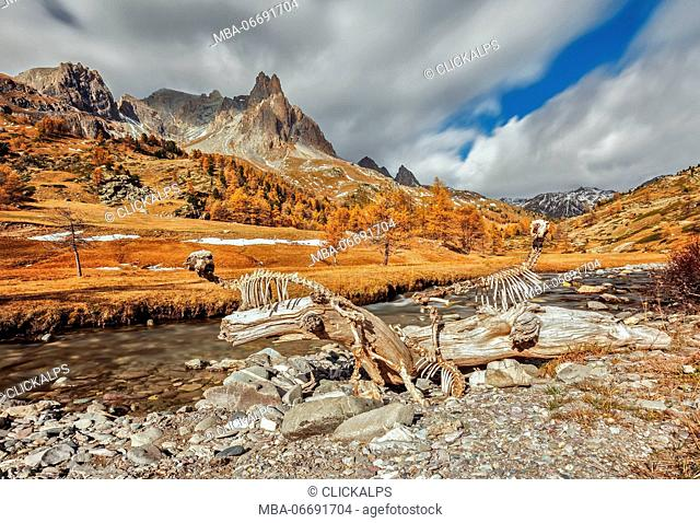Claree valley, autumn, cerces, French alps, France