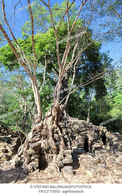 The remains of a bridge across a long gone river at Spean Thma (bridge of stone), Angkor, Siem Reap, Cambodia