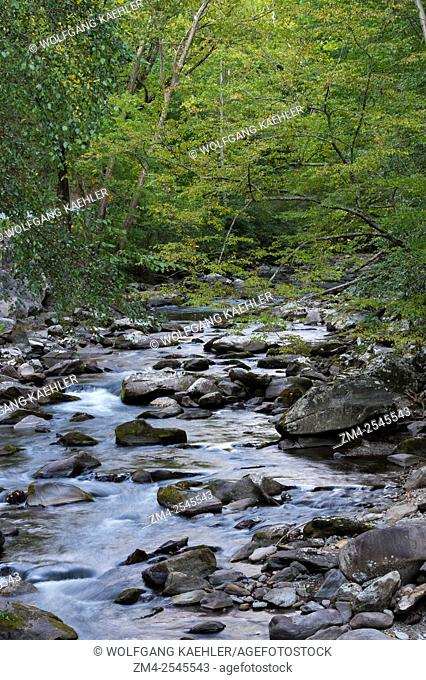 Laurel Creek in Great Smoky Mountains National Park in Tennessee, USA