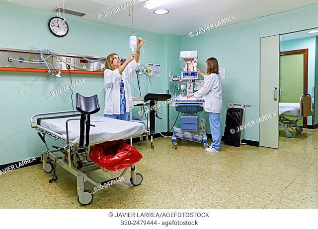 Delivery room, Births Area, Newborns, Hospital Donostia, San Sebastian, Gipuzkoa, Basque Country, Spain