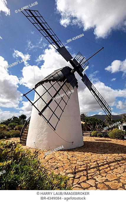 Windmill in the museum Museo del Queso, Antigua, Fuerteventura, Canary Islands, Spain
