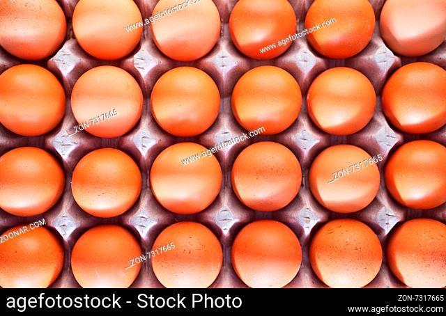 raw brown egg, chicken eggs on a table