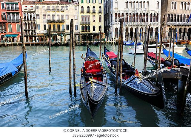 Traditional venetian gondolas in front of Palaces along the grand canal , Venice, Veneto, Italy, Europe