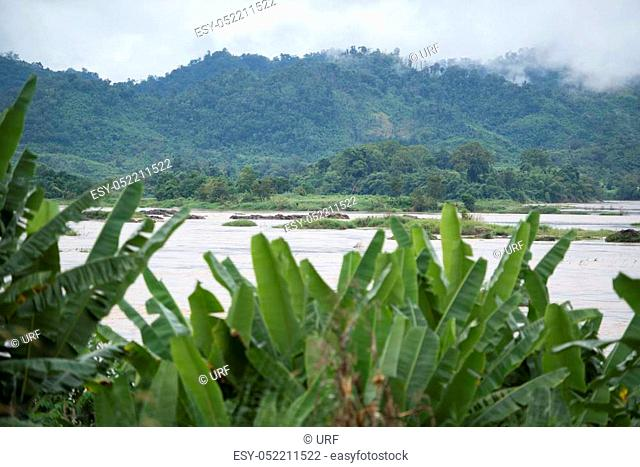 the landscape of the mekong river on the road fron the Town Nong Khai to the town of Chiang Khan in Isan in north east Thailand