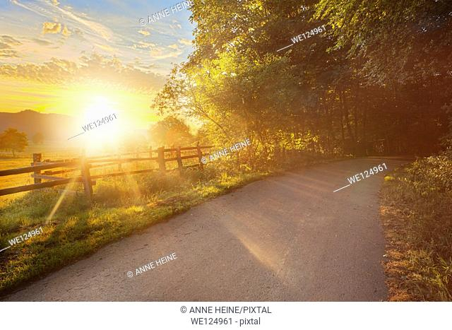 road leading into forest, sun rising above haarstrang, shining into foggy moehnetal, location: warstein-belecke, sauerland, germany