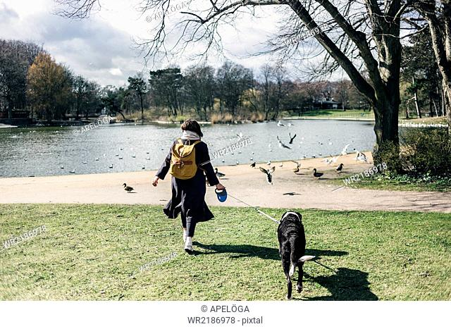 Rear view of woman walking with mixed-breed dog at park