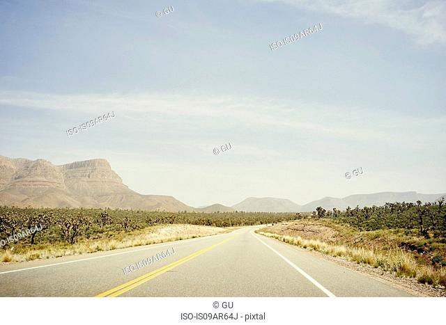 Pierce Ferry Road, en route to Grand Canyon West, Arizona, USA
