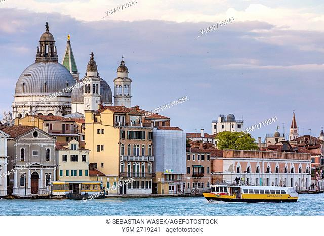 Basilica di Santa Maria della Salute at Venice seen from Giudecca, Veneto, Italy, Europe