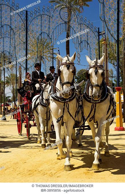 Decorated horses and dressed up coachmen at the Feria del Caballo Horse Fair, Jerez de la Frontera, Cádiz province, Andalusia, Spain