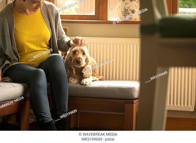 Pregnant woman caressing dog in living room